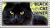Black Cat Owner by WishmasterAlchemist