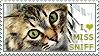 I love Miss Sniff by WishmasterAlchemist