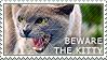 Beware the Kitty by WishmasterAlchemist