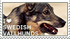 I love Swedish Vallhunds by WishmasterAlchemist