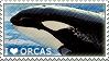 I love Orcas by WishmasterAlchemist