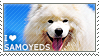 I love Samoyeds by WishmasterAlchemist