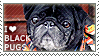 I love Black Pugs by WishmasterAlchemist