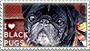 I love Black Pugs by WishmasterAlchemist