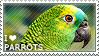 I love Parrots by WishmasterAlchemist