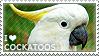 I love Cockatoos by WishmasterAlchemist