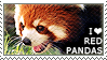 I love Red Pandas by WishmasterAlchemist