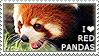 I love Red Pandas
