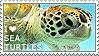 I love Sea Turtles by WishmasterAlchemist