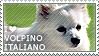 I love Volpino Italiano by WishmasterAlchemist