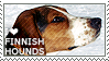 I love Finnish Hounds by WishmasterAlchemist