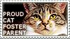 Proud Cat Foster Parent by WishmasterAlchemist