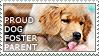 Proud Dog Foster Parent by WishmasterAlchemist