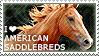 I love American Saddlebreds