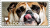 I love Bulldogs by WishmasterAlchemist