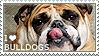 I love Bulldogs by WishmasterAlchemist