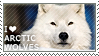 I love Arctic Wolves by WishmasterAlchemist
