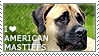 I love American Mastiffs by WishmasterAlchemist
