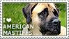 I love American Mastiffs by WishmasterAlchemist