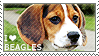 I love Beagles by WishmasterAlchemist