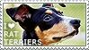 I love Rat Terriers