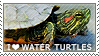 I love Water Turtles