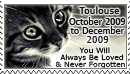 In Memory of Toulouse by WishmasterAlchemist