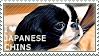 I love Japanese Chins by WishmasterAlchemist