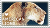 I love American Lions