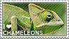 I love Chameleons