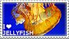 I love Jellyfish by WishmasterAlchemist