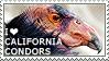 I love California Condors