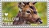 I love Fallow Deer by WishmasterAlchemist
