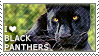 I love Black Panthers