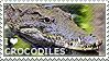I love Crocodiles