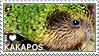 I love Kakapos