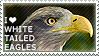 I love White-tailed Eagles