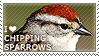 I love Chipping Sparrows by WishmasterAlchemist