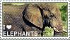 I love Elephants by WishmasterAlchemist
