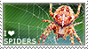 I love Spiders by WishmasterAlchemist