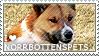 I love Norrbottenspets by WishmasterAlchemist