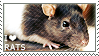 I love Rats by WishmasterAlchemist