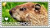 I love Groundhogs