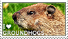 I love Groundhogs