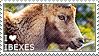 I love Ibexes by WishmasterAlchemist