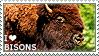 I love Bisons by WishmasterAlchemist