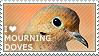 I love Mourning Doves