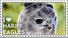 I love Harpy Eagles by WishmasterAlchemist