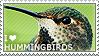 I love Hummingbirds