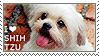 I love Shih Tzu by WishmasterAlchemist